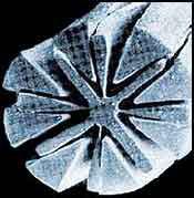 Расщепленное микроволокно